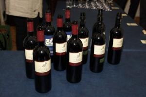 Weinpräsentation 2017-008